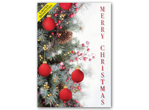 Distinctive Décor Christmas Cards